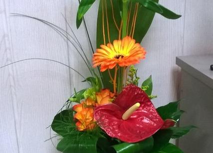 Bouquet de fleurs exotiques pour la saint valentin