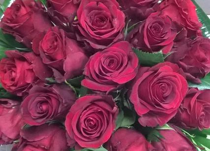 bouquet de roses rouges st-valentin