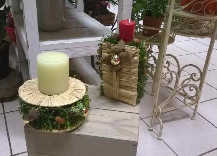 Le jardin D'Ester