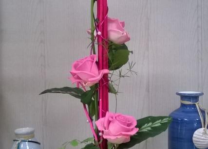 Roses pour fête des mères