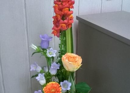 Composition de fleurs à offrir